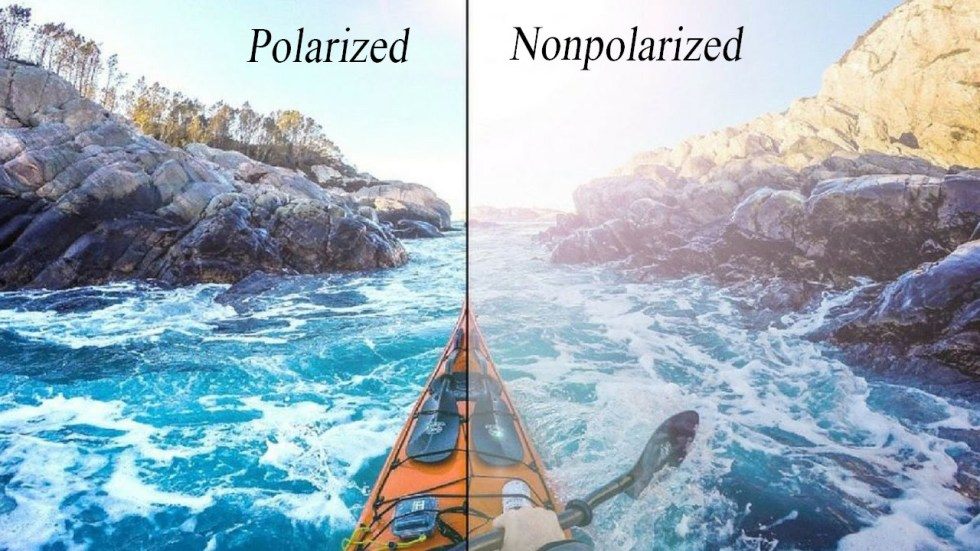 Polarized and non polarized